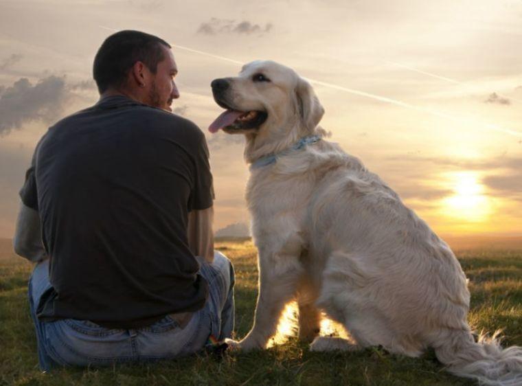 Лучший друг и пес Мотя