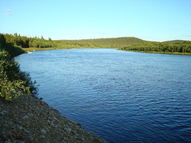 Рыбалка в маленькой речке.