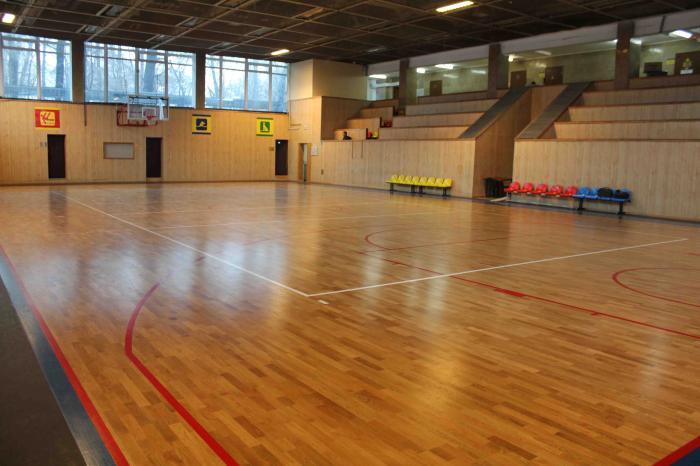 Школьные соревнования по баскетболу.