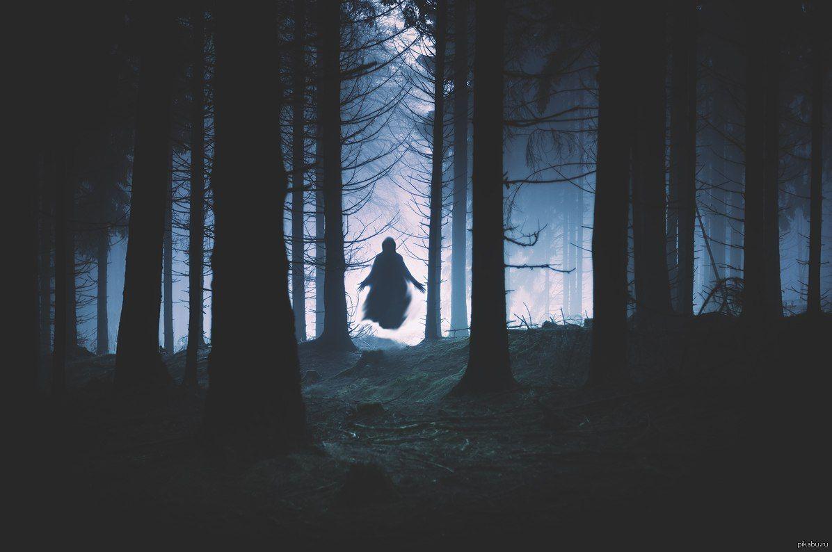 Призрак из леса