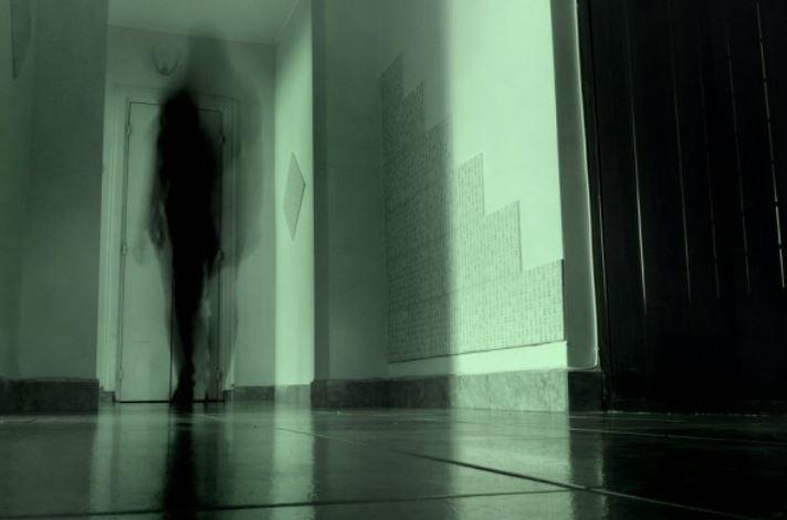 Кажется, у меня дома живет призрак