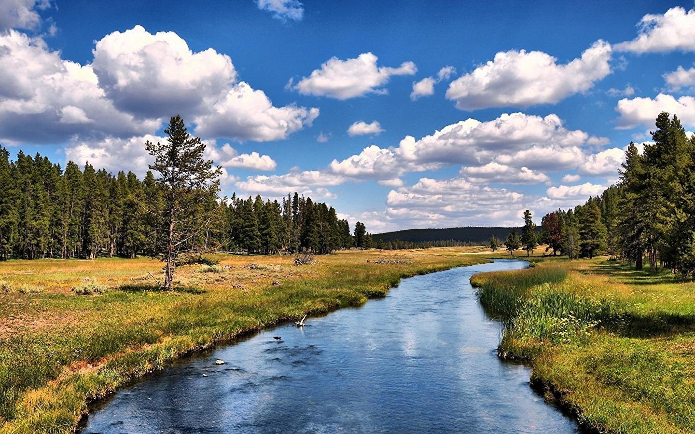 Отдых на речке