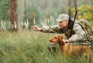 Охота на просторах Польши