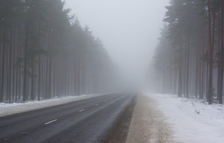 В туман за товаром