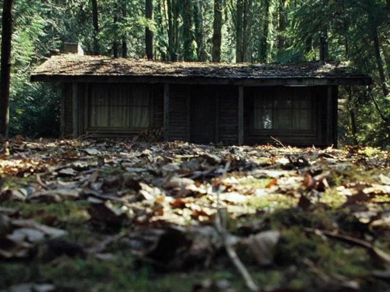 Хижина посреди лесу
